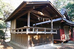141214船橋秋葉神社スダジイ⑩