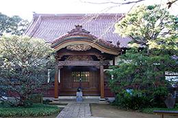 141214高根寺のスダジイ⑤