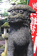 150222葛見神社の大楠⑦