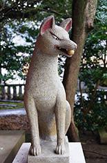 150222葛見神社の大楠⑧