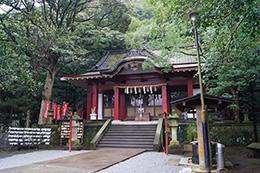 150222葛見神社の大楠⑨