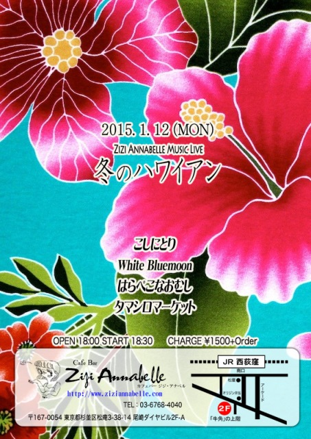 flyer_WinterHawaiian_2015_01.jpg