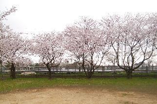 170410小松市Y様邸(2)