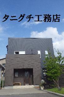 IMGP1784.jpg