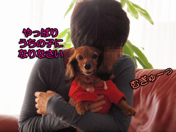 20091018_01.jpg