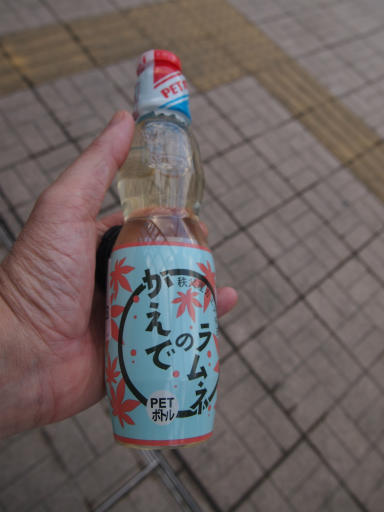 20150111・芦ヶ久保氷柱2-06