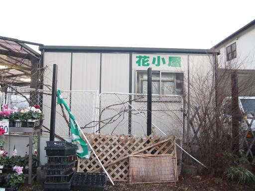20150111・芦ヶ久保氷柱2-07