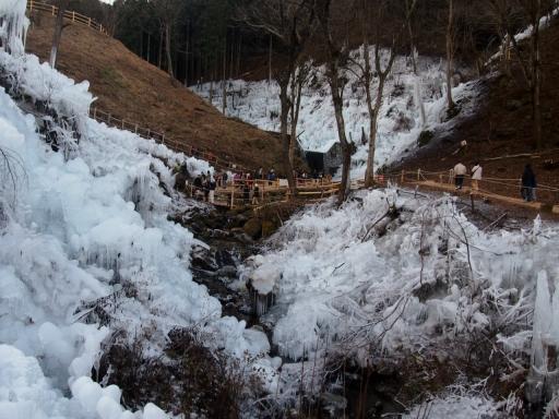 20150111・芦ヶ久保氷柱大1