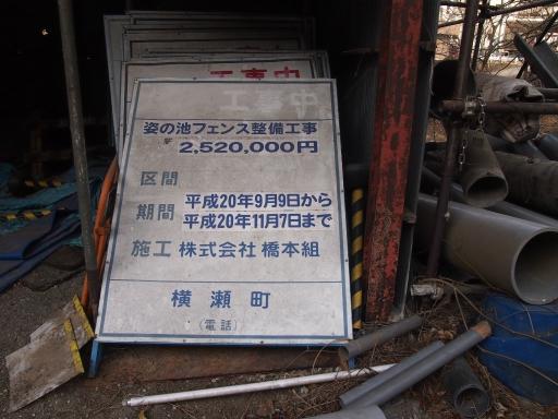 20150111・芦ヶ久保氷柱ネオン04