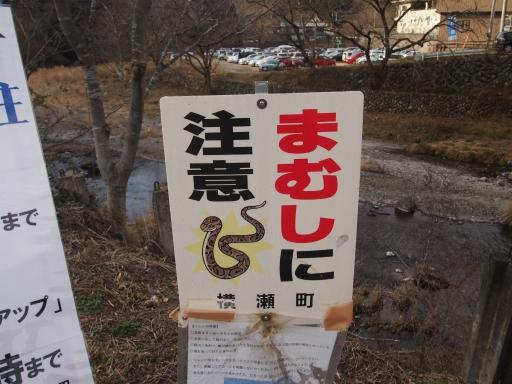 20150111・芦ヶ久保氷柱ネオン03