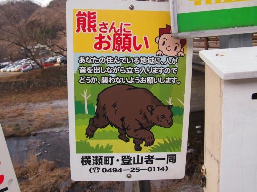 20150111・芦ヶ久保氷柱ネオン02