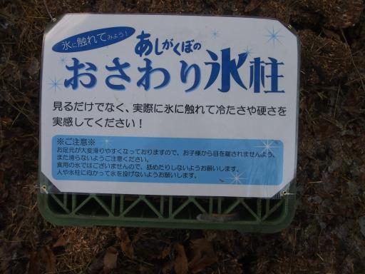 20150111・芦ヶ久保氷柱ネオン08