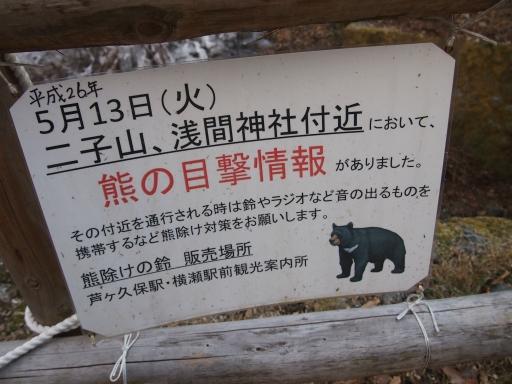 20150111・芦ヶ久保氷柱ネオン07