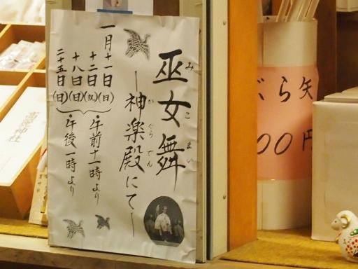 20150111・芦ヶ久保氷柱ネオン15