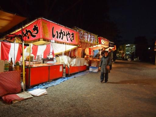20150111・芦ヶ久保氷柱ネオン21
