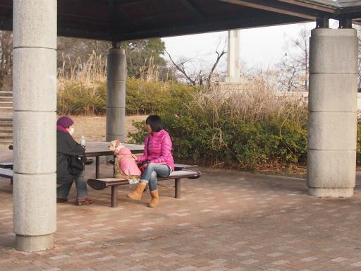 20151025・芸術的に、狭山湖へ16