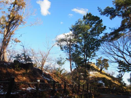 20150131・荒幡富士04