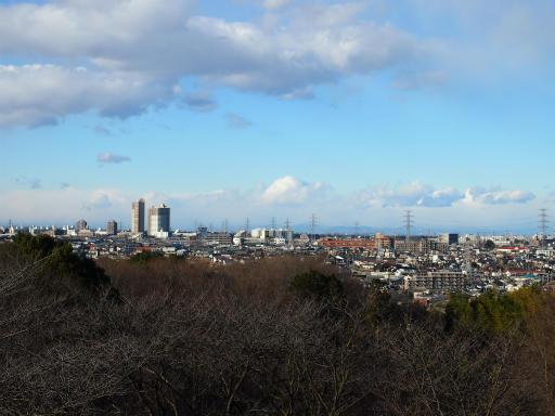 20150131・荒幡富士15