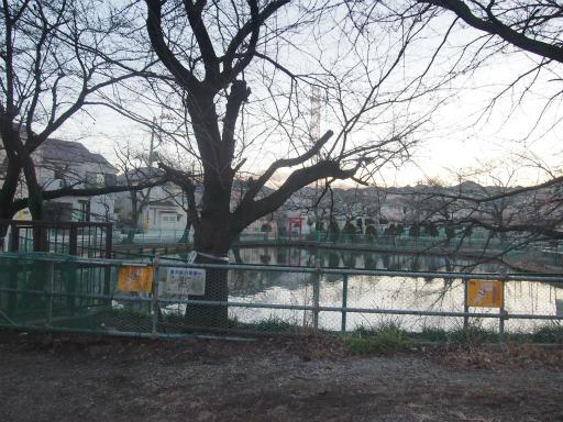 20150131・荒幡富士24