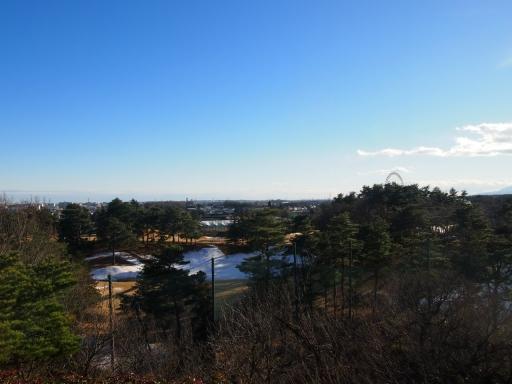 20150131・荒幡富士の木の空1
