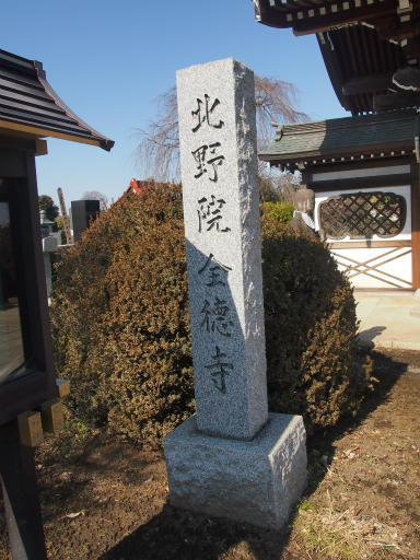 20150211・散歩04