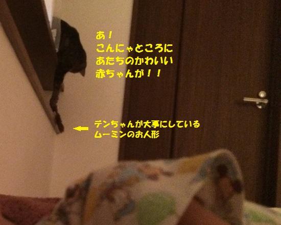 2015年8月14日③