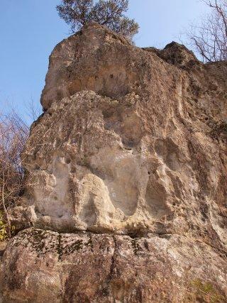 s02猿岩