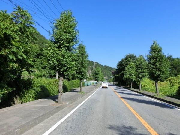 2015-08-15 しらびそ峠 036