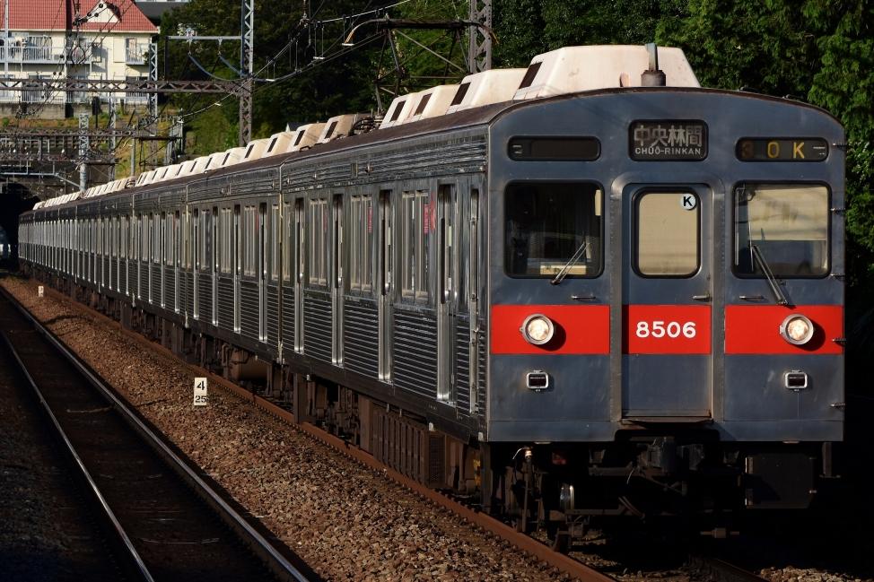 DSC_4967kari.jpg