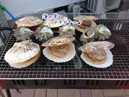 嵐丸 2015.8.15-4