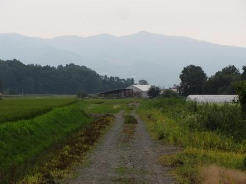円山駅付近深名線廃線跡