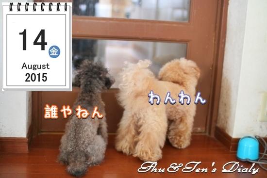 008IMG_8627.jpg