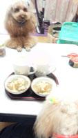 わらび餅♪3