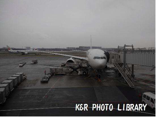 3月21日JAL303便