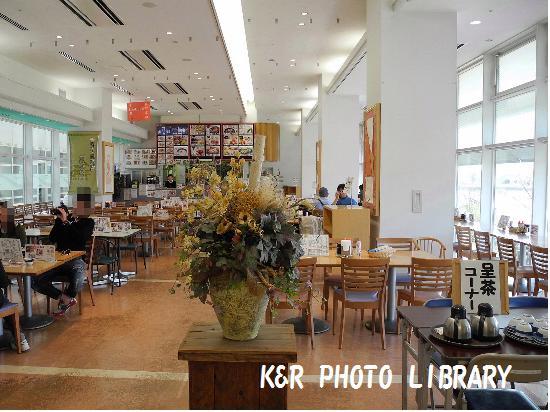 3月21日吉野ヶ里歴史公園レストラン