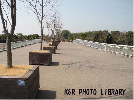3月21日天の浮橋