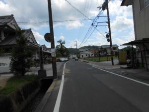 DSCN0087.jpg