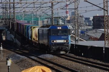 IMGP1377.jpg