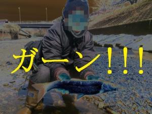 DSC_3128_2.jpg
