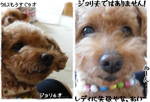 mother8.jpg