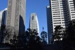 1.新宿西口高層ビル群:都庁中央通りより-02D 1712qt