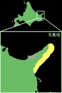 羅臼昆布地図