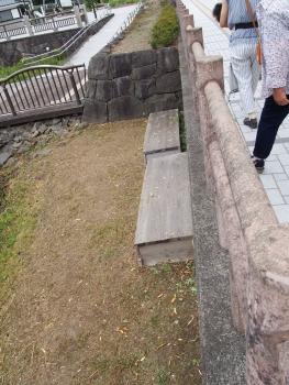 千秋公園レンコン船