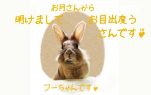 konichiha_1_2.jpg