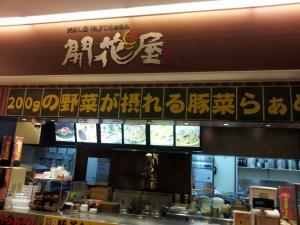 kaikaya_1.jpg