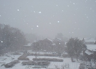 snow-kura3.jpg
