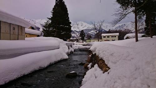 雪が降り積もった白馬の川