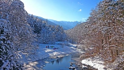 冬の烏川渓谷緑地1