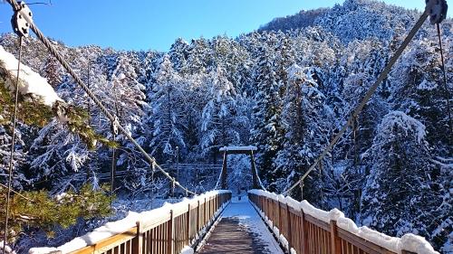 冬の烏川渓谷緑地2