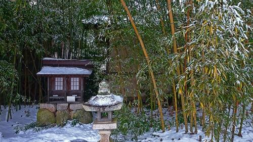 雪を被った小さな祠と竹